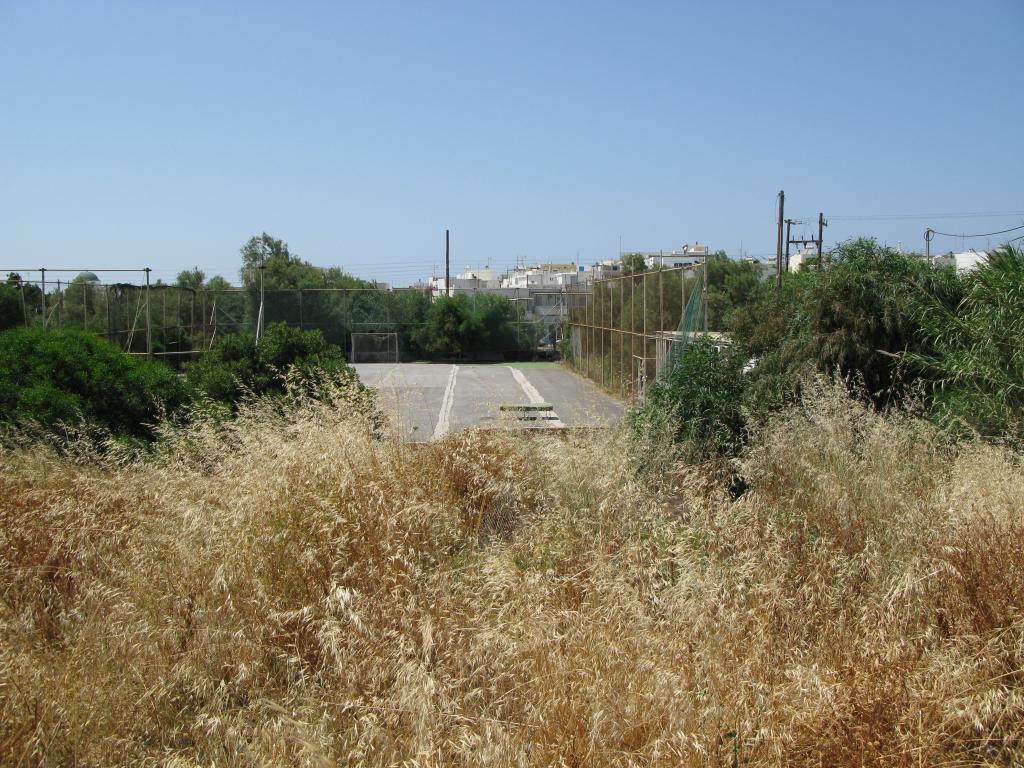 naxos-06-2009-_IMG_0763