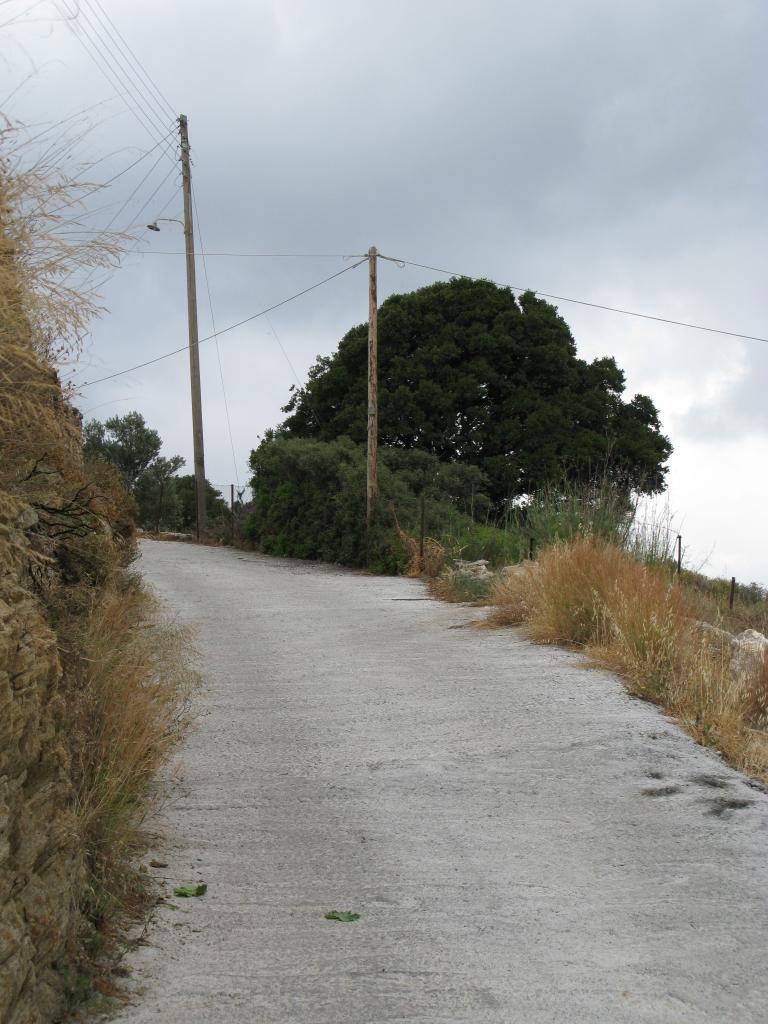 naxos-2010_IMG_1231