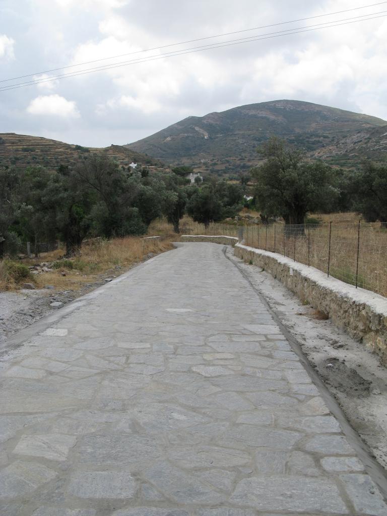 naxos-2010_IMG_1235