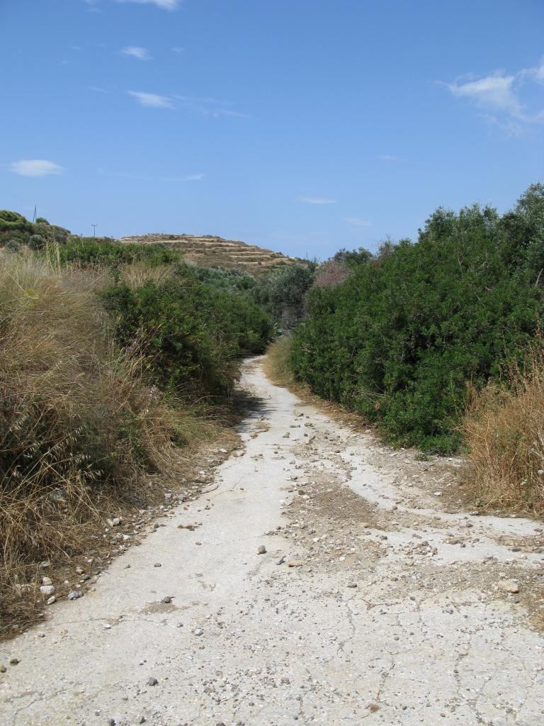 naxos-2010_IMG_1254