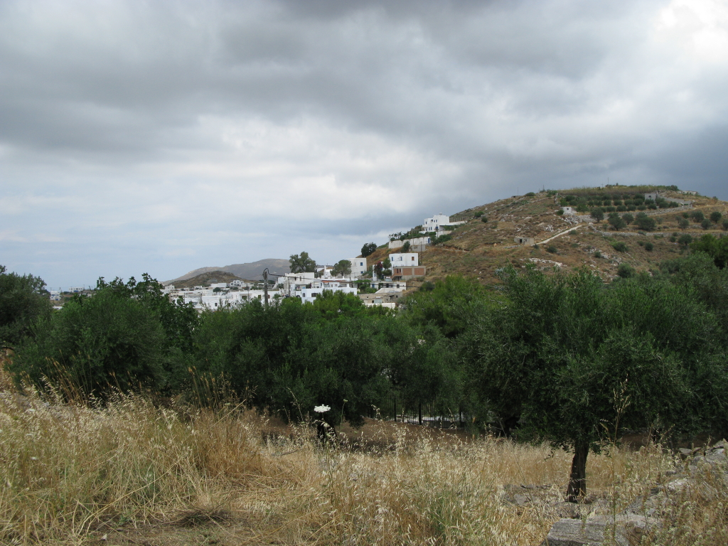 naxos-2010_IMG_1268