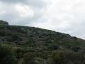 naxos-2010_IMG_1203