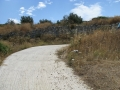 naxos-2010_IMG_1261