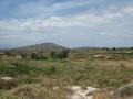 naxos-2010_IMG_1279