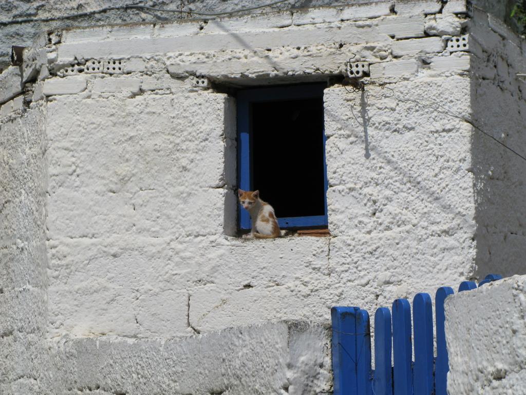 Naxos Juni 2010